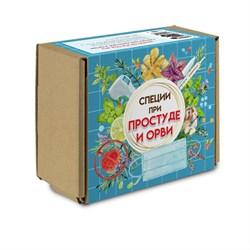 Набор пряностей при простуде и ОРВИ, натуральная аптечка от 108 специй, 30 наименований - фото 12517