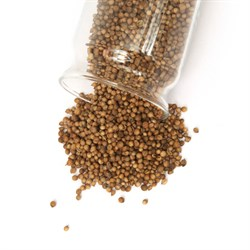 Кориандр семя (кинза) 108 специй дой-пак, 100 г - фото 7192